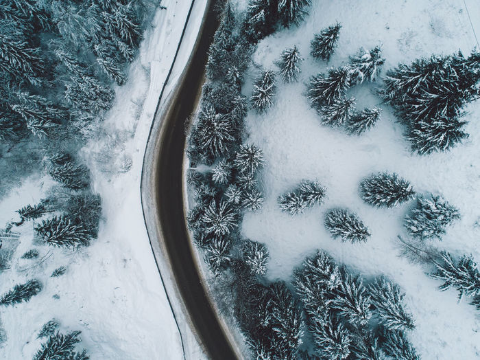 Winter Snow Cold Temperature Nature No People Beauty In Nature Day Plant White Color Covering High Angle View Tree Land Tranquility Frozen Scenics - Nature Field Outdoors Extreme Weather Powder Snow