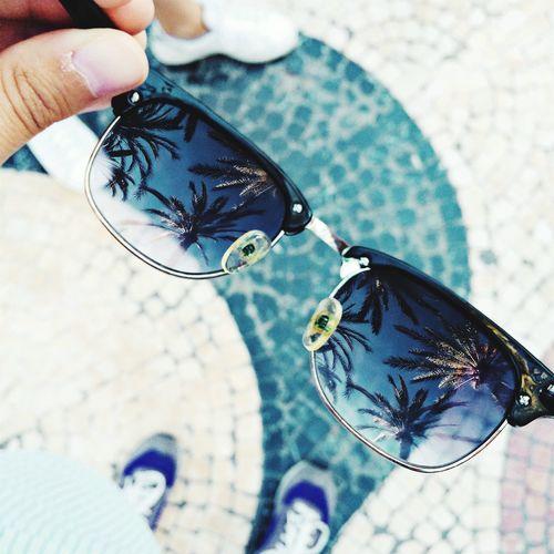 So fresh 🌴 Outdoors Modern Palm Palm Trees Clubmaster Sunglasses Hipstamatic Hipster Freshness Fresh Summer Cool Alicante EyeEm Gallery EyeEm Best Edits EyeEm Nature Lover Fresh On Eyeem