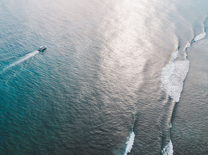 High angle view of horse in sea