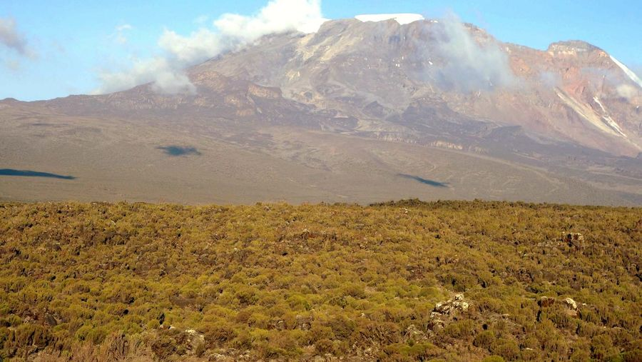 Arusha Beauty In Nature Hike To Kilimanjaro Hiking Mt Kilimanjaro Landscape Mount Kilimanjaro From 13,000 Feet Mountain Nature Outdoors Scenics Tanzania Tranquil Scene Tranquility Trekking