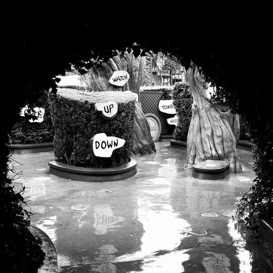 Where? Artist EyeEmNewHere Happiness Love Paris Peace Art And Craft Blackandwhite Bnw Communication Creativity Food Fustration Human Representation Landscape Madewithsoul Nature Nautical Vessel Night No People Outdoors Plant Representation Sign Text Transportation Tree Water Waterfront Western Script A New Beginning A New Perspective On Life