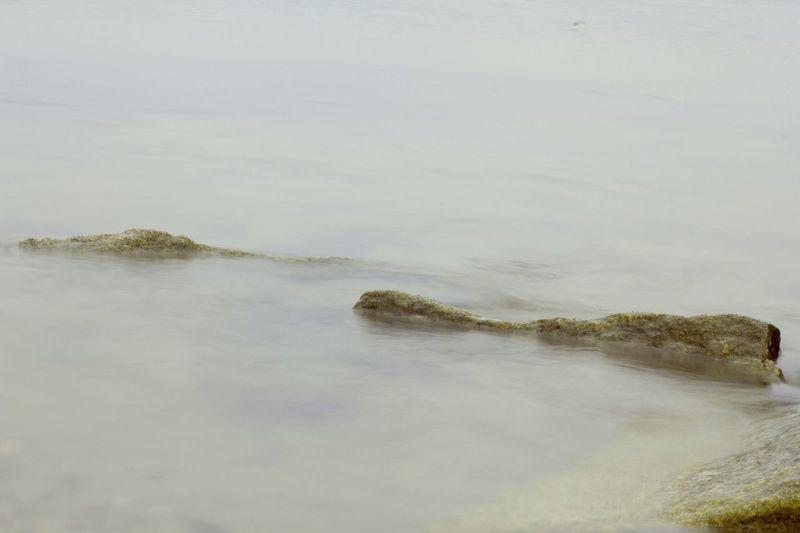 Stones Rocks Nature Eyemnaturelover Sea Beach Mist Water Baltic Sea Eyem Best Shots