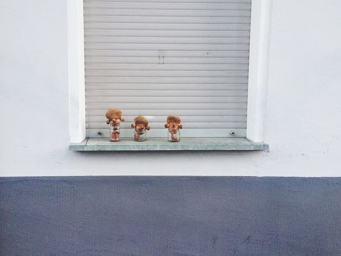 Brown toys in jars on window sill