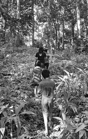 In the Jungle. Mobilephotography Blackandwhite Lifestyles Tree Walk Grass GalaxyS7Edge Sarawak Malaysia People