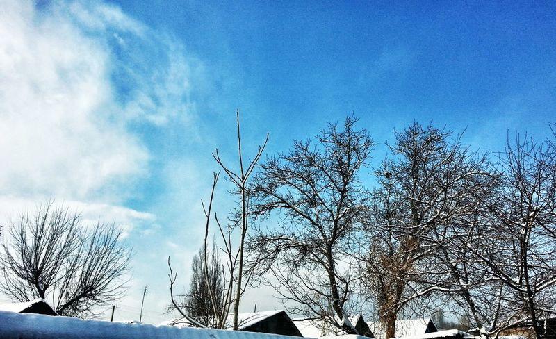 Winter Sky Taking Photos