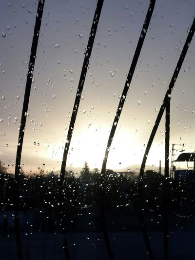 A Weird Morning ! Morning Sky Morning Light Itsraining Rainy Days Raindrops Looks Peaceful Whatisee Isperfect