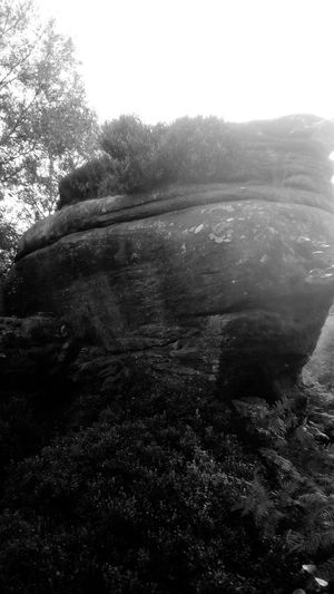 Brimham Rocks Yorkshire Rock - Object Nidderdale Brimham Rocks Brimhamrocks Brimham Moor The Week On EyeEm Outstanding Natural Beauty North Yorkshire National Trust 🇬🇧 Nature No People Day Tranquility Tree Beauty In Nature Outdoors Scenics Sky Landscape Grass Water Clear Sky