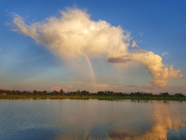 Water Multi Colored Sunset Beauty Blue Thunderstorm Tree Lake Rainbow Summer Spectrum Refraction