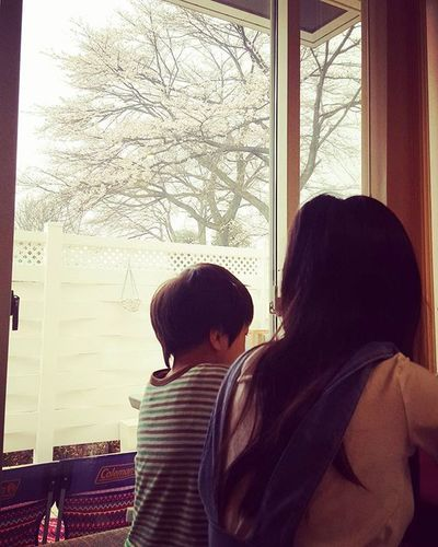 桜がいい感じ あさめし食べながら眺める桜 Cherryblossom ダイニング 今日も全開でいこー! ウェイオー!