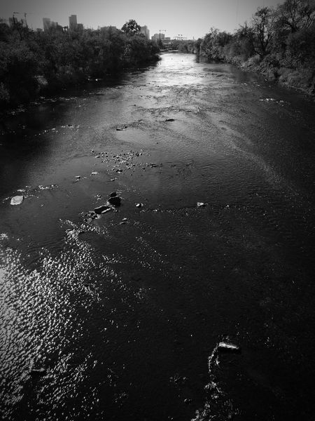 Serious Ripples In The Water River View Blackandwhite Black And White High Contrast Bnw Naturelovers Beautiful View Darkness And Light Darkart Bridge View Overlooking Above Water High Noon Highnoon Noonearound Cranespotting Reflection Water Water Reflections River Riverscape Treescape Tree Silhouette Silhouette