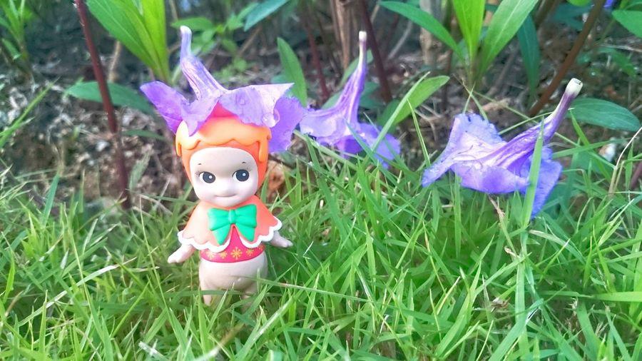 Grass Flower Head Vacation Holiday Minifigure Collection Sonnyangel Thailand Kewpie Sonnyangelthailand Toys Toy Kewpiedoll Dolls Doll Green Color Grass Toyphotography Toy Photography Collections Figure Minifigures Figures Close-up
