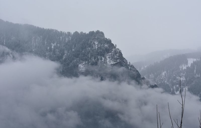 Mountain covered with trees and snow, surrounded with heavy fog.