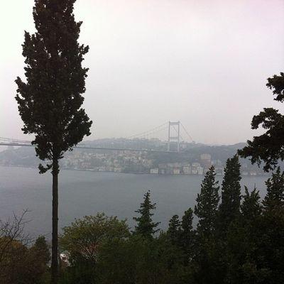 Mihrabad Mihrabat Boğaz Bosphorus bogazkoprusu marmara manzara nature istanbul sea deniz