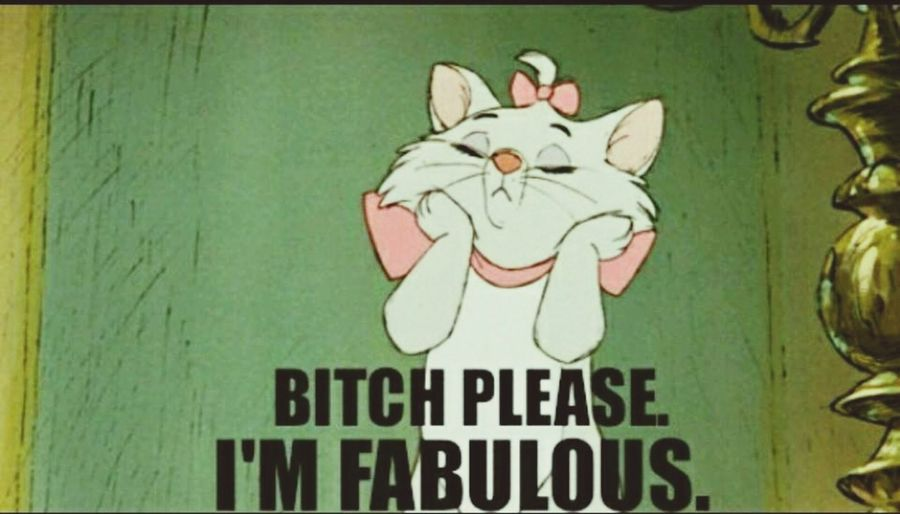 Bitchplease I'm Fabulous Cat♡