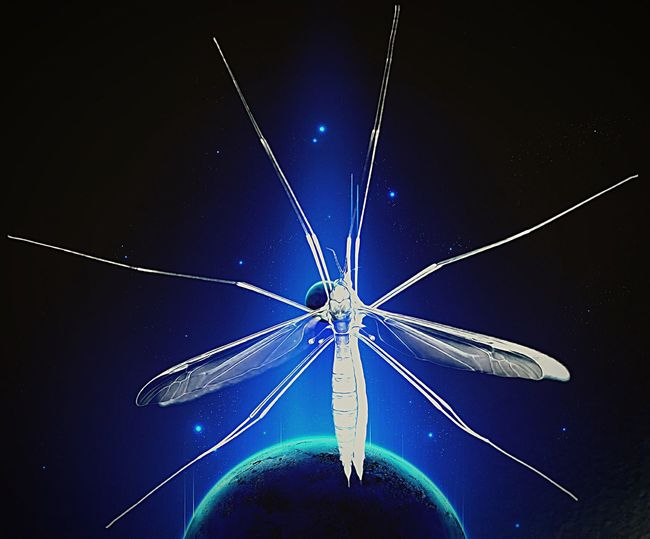 Aliens Have Landed! Nope It's A Daddy Long Legs! Digital Art Art, Drawing, Creativity Creative Photography Photo Manipulation Rebelpunk Bugs Space Planets