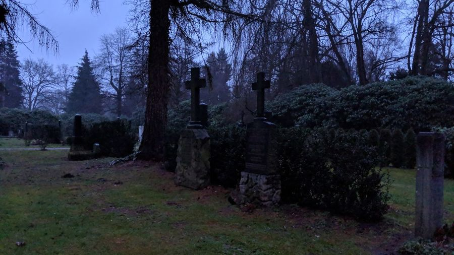 Cemetery. Hamburg Germany Hh Ohlsdorf Ohlsdorfer Friedhof Cemetery Friedhof Dusk Nightfall Winter Cold Spooky Spooky Atmosphere Mystery Mysterious Outdoors Death Life Quiet Moments Quiet Solitude Simplicity Tree Flower