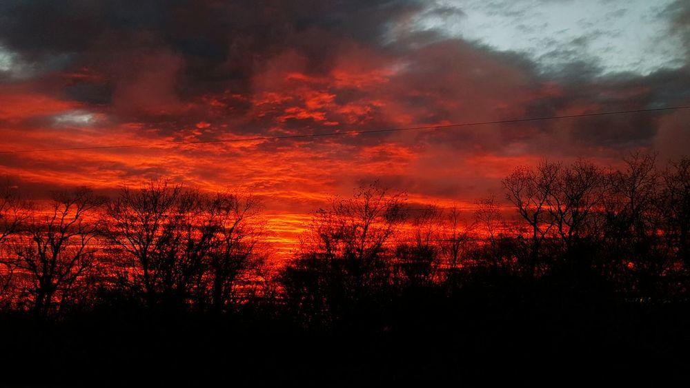 My Winter Favorites Taking Photos Enjoying The View EyeEm Nature Lover Sunset_collection DECEMBER2015