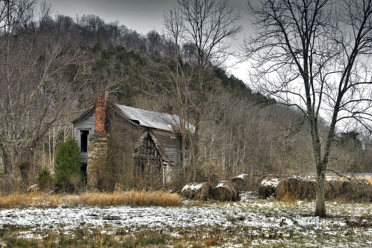 Bails Decay Farm Tree Trees Wood Ccountry Side Decayed Beauty Decaying Decaying Building Decaying Structure Decaying Wood Hay Hay Bails Old Old Buildings Old House Old Ruin Wooden
