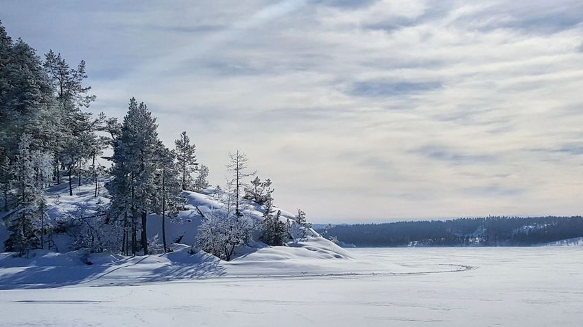 Snow Nature No People Outdoors Beauty In Nature Taking Photo Enjoying The View Västernorrland Landscape Nature_collection Winter A Day On The River