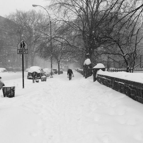 Jonas Blizzard 2016 New York City Washington Heights City Life Snow Winter Winter Trees Nature Approaching Blackandwhite Storm