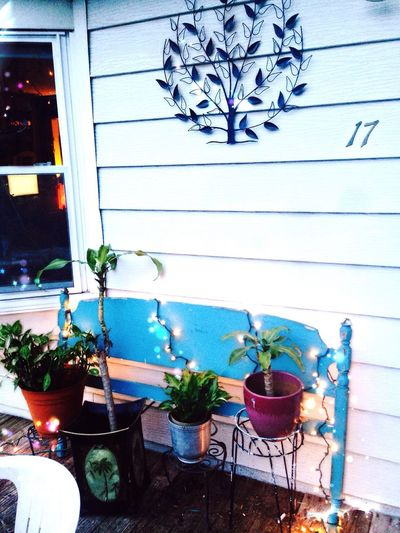 Potted Plant Arrangement Boone NC NC Love Nc Spring Porch Life