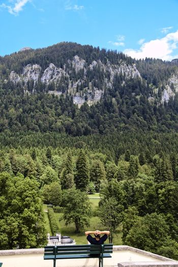 Rear view of man sitting on bench looking at linderhof castle and a tree covered mountain range