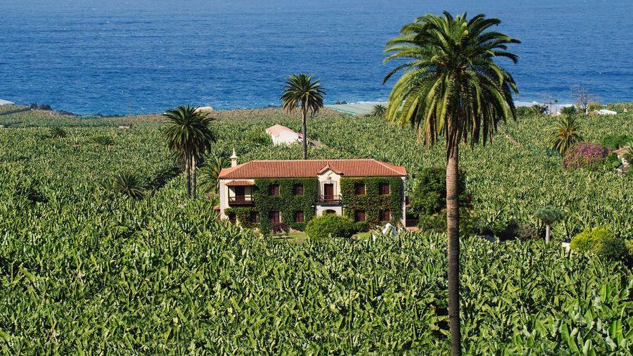 Una foto que tengo pendiente hacer con mimo en las Islas Canarias The Tourist