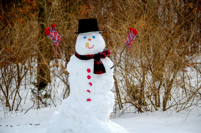 this happy snowman smokes a corn cob pipe and wears a top hat, scarf and mittens Snow ❄ Bare Tree Beauty In Nature Childhood Cold Cold Temperature Corn Cob Pipe Day Human Representation Mittens And Scarf Nature No People Outdoors Scenic View Snow Snowman Top Hat Tree White Color Winter The Fashion Photographer - 2018 EyeEm Awards