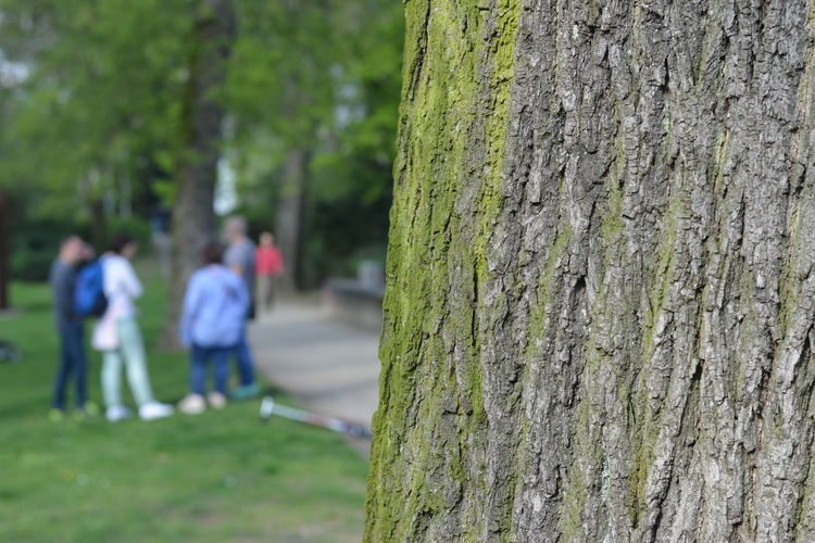 Adult Adults Only Close-up Day Focus On Foreground Grass Green Color Green Tones Growth Nature Outdoors Park Life People People Out Of Focus Social Issues Tree Tree Tree Bark Texture Tree In Focus Tree In Foreground Tree Trunk