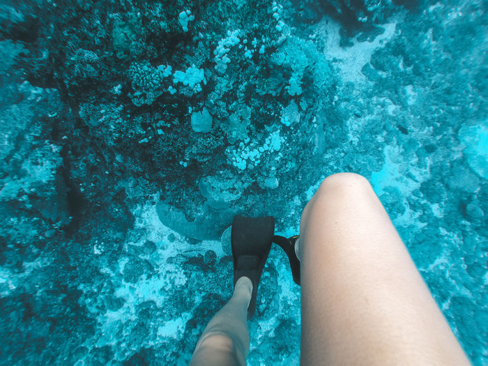 Low section of woman wearing diving flipper in water