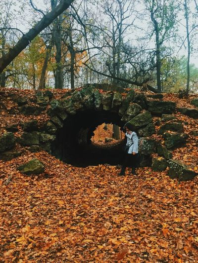 Autumn in Moscow Autumn Change Tree Leaf Real People Full Length Nature Forest Leisure Activity Day Lifestyles One Person Outdoors Walking Beauty In Nature Men Moscow Russia Standing Scenics Architecture