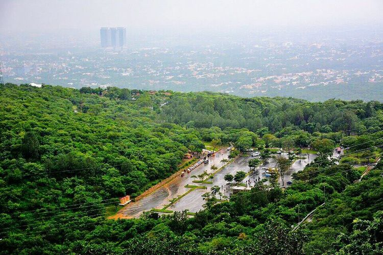 Islamabad View IslamabadTheBeautiful Islamabad Nature Tree City Outdoors Beauty In Nature Margalla Hills Green Nature Pakistan