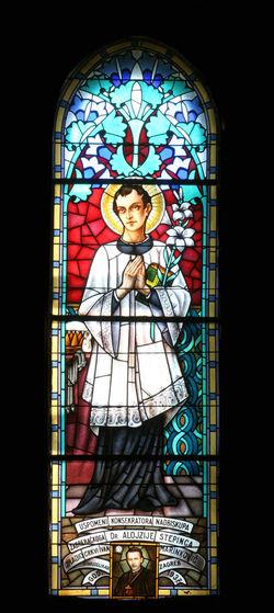Saint Aloysius Aloysius Belief Christianity Church Croatia Faith Holy Place Of Worship Religion Religious  Saint Spirituality Stained Glass Window Windowpane Worship