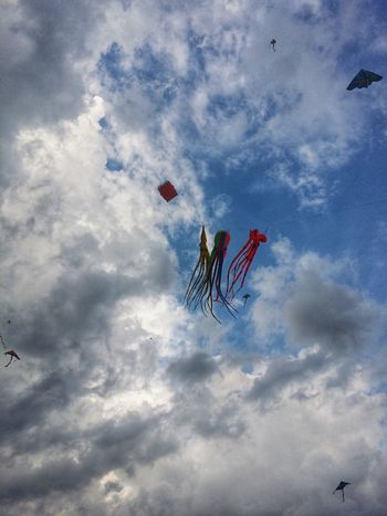 Kites in the sky Blue Sky View Kites Teamwork Flying Mid-air Motion Sky Cloud - Sky Kite - Toy Formation Flying EyeEmNewHere Holiday Moments