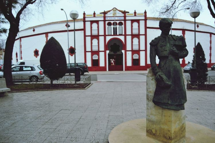 Plazadetoros Bullring Square Bust