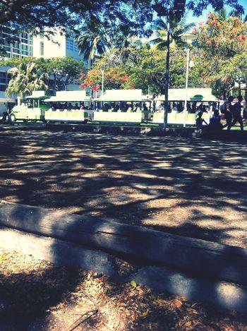 The train tourism Australia :) People Watching Walking Around
