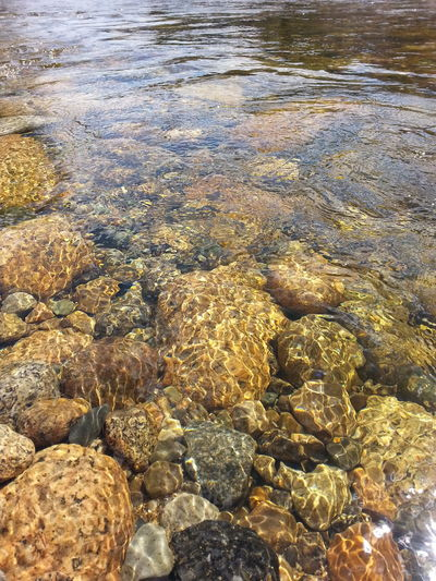 Water Water_collection Rocks And Water River Rocks Refraction Movement Riverbed Moving Water Golden Granite Natures Color Palette Beauty In Nature Nature Motion Age 43 Golden Moments New Hampshire Sunlight On Water Pemigewasset River Prismatic Effect