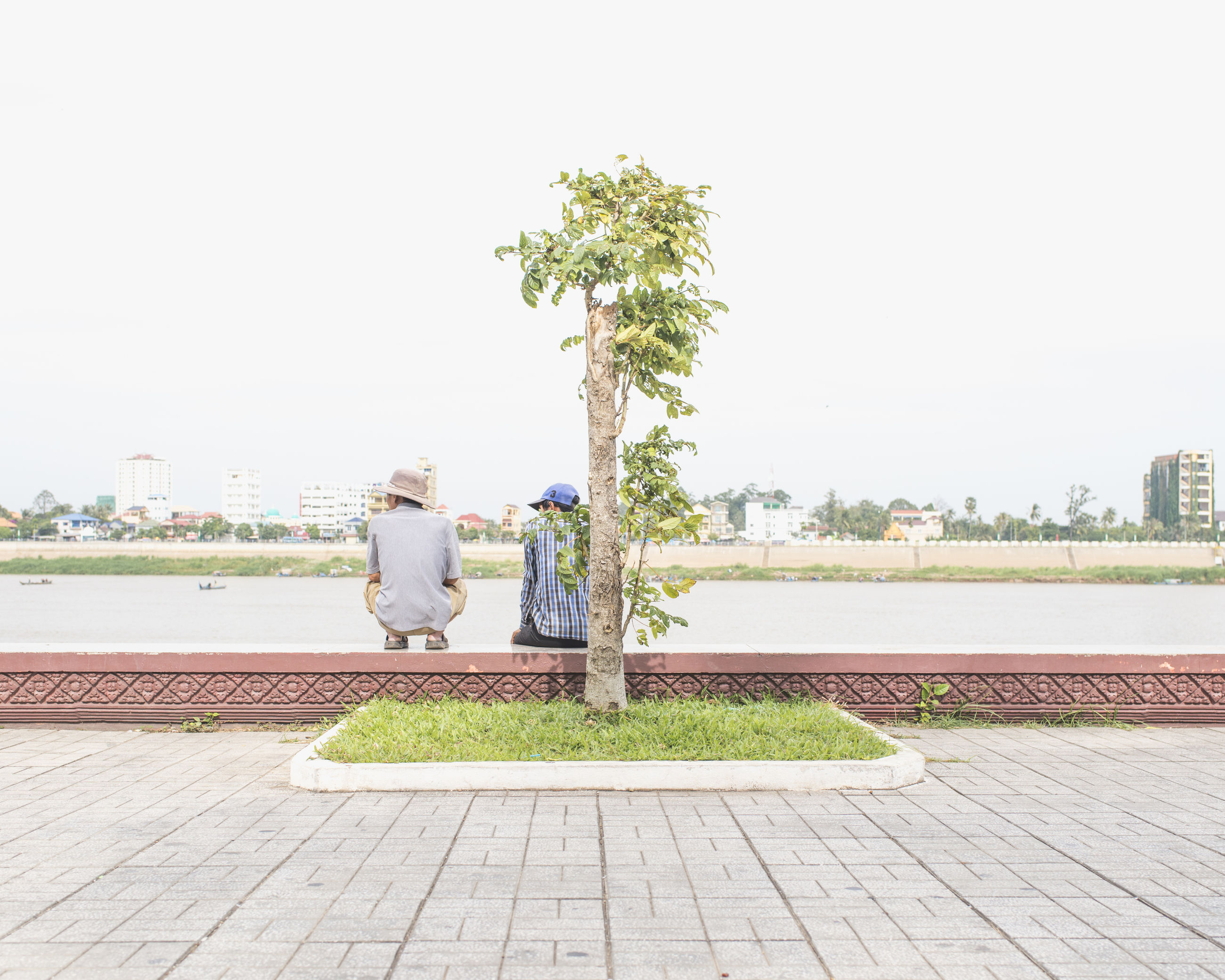 clear sky, copy space, tree, grass, building exterior, day, park - man made space, footpath, built structure, city, water, outdoors, bench, street, green color, plant, architecture, growth