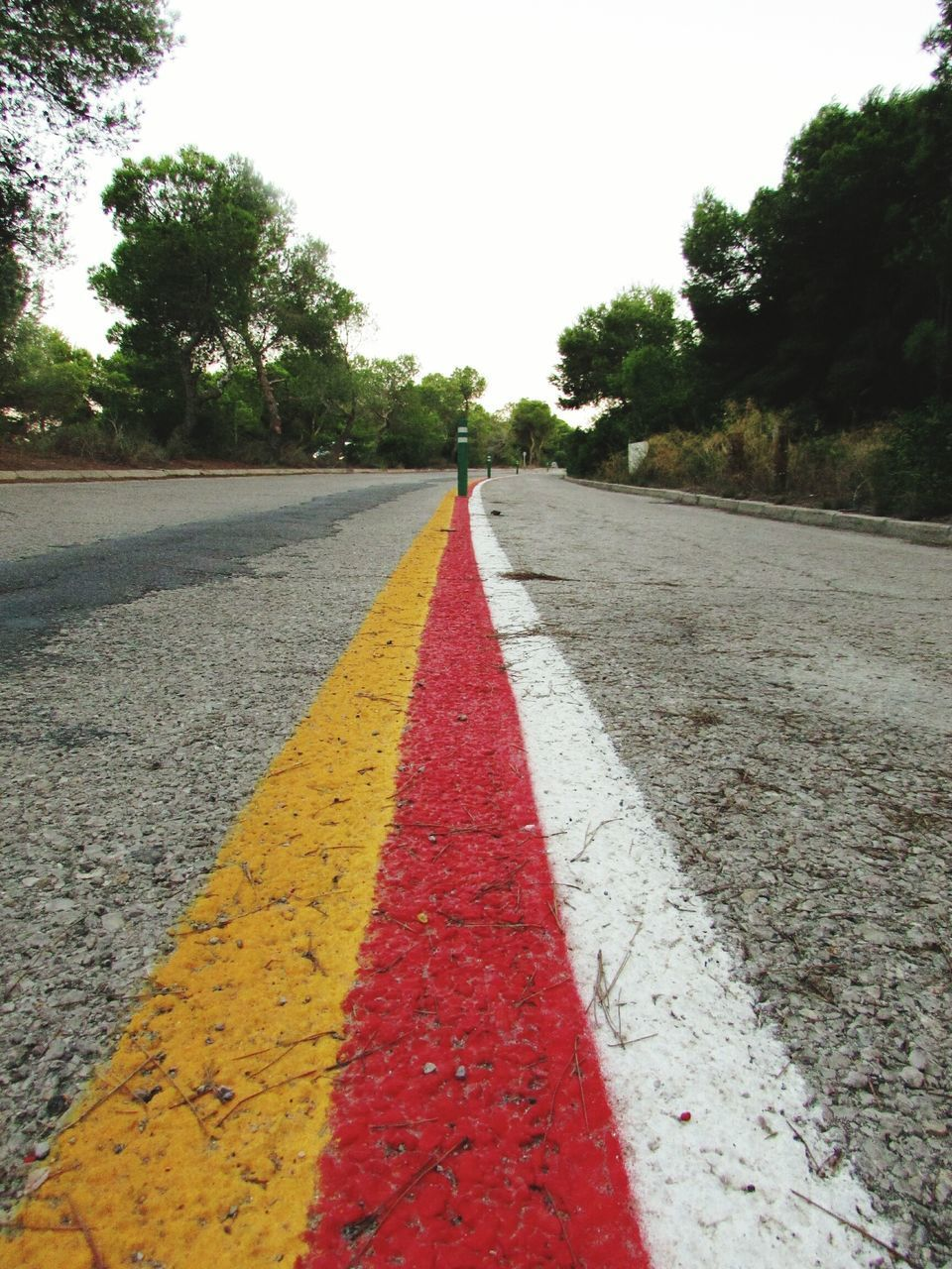 the way forward, road, tree, diminishing perspective, road marking, transportation, red, yellow, street, asphalt, day, outdoors, no people, straight, sky, nature