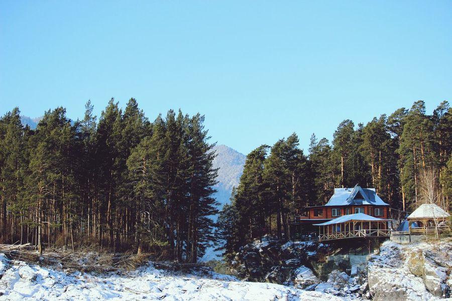 Алтай АлтайскийКрай горноалтайск горы домик деревья пейзаж Природа природароссии Altay Mountains House Nature Naturerussia
