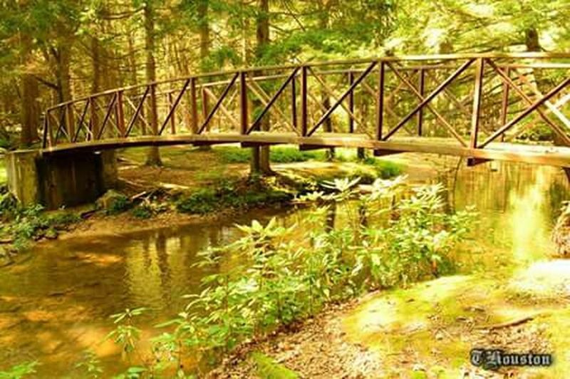 State Park  Bridge Creek Nature Nature_collection Nature Photography Pennsylvania Beauty Water Nikon Outdoors
