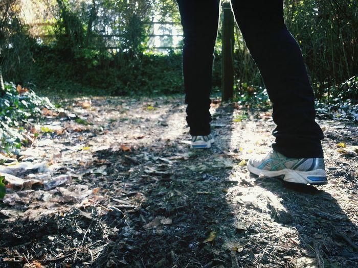 Walking Around Hiking Trail Exercise
