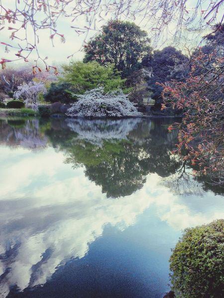 EyeEm Tokyo Meetup 3 Reflection