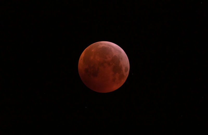 Super blood wolf moon Moon Blood Moon 2019 Blood Moon 2019 Astronomy Space Moon Moon Surface Clear Sky Full Moon Sky Planetary Moon Eclipse Space And Astronomy Galaxy