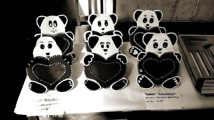 El panda es un animal de pelaje blanco y negro peri su corazon es rojo First Eyeem Photo