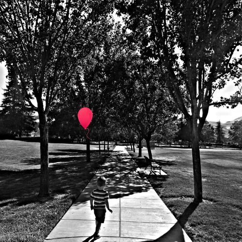 Toddlers path in life Check This Out Toddler  Toddlerlife Boy Trees Pathway Landscape Landscape_Collection Trees And Sky Exploring Exploring New Ground Life Love EyeEm Best Shots EyeEm Nature Lover Gettyimages Walking Canopy Of Trees CanopyWalkway Red Pop Of Colour Balloon