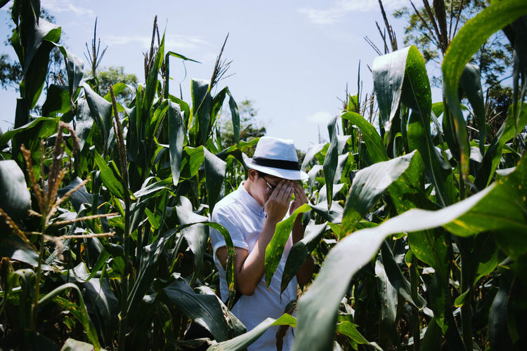 Man covering face in corn field