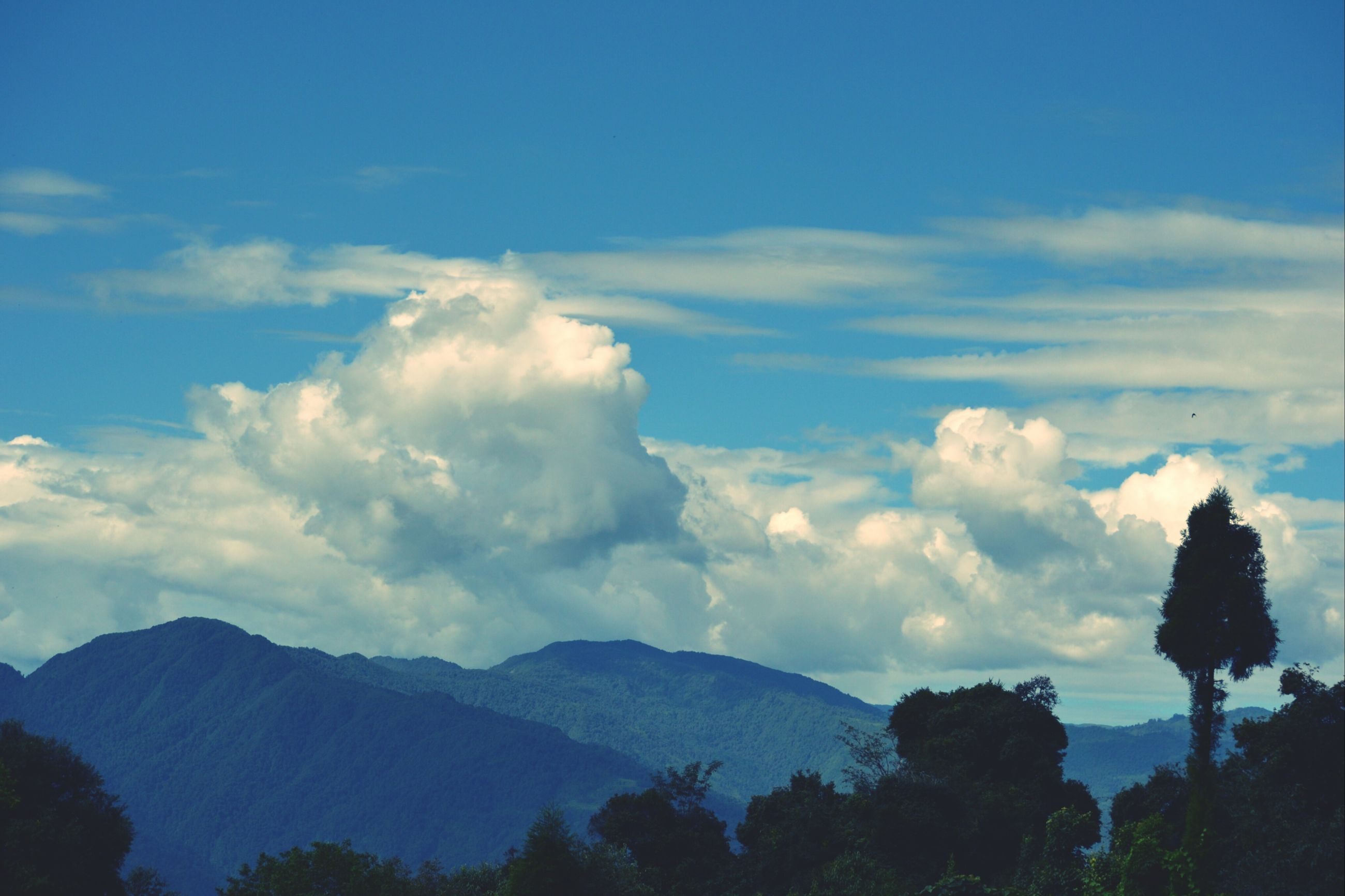 mountain, scenics, tranquil scene, tranquility, sky, beauty in nature, mountain range, tree, cloud - sky, nature, landscape, cloud, idyllic, non-urban scene, blue, outdoors, day, remote, silhouette, no people