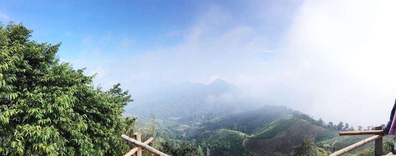 🏞 ขุนสถาน Tree Mountain Beauty In Nature Nature Mountain Range