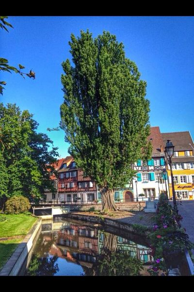 Colmar France Street Photography Nature Traveling